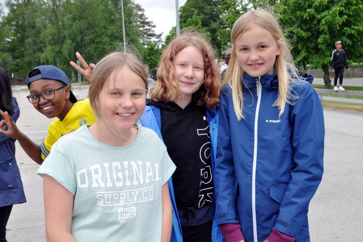 Fyra dmda efter stldvg i Dalsland | TTELA - Regionalt