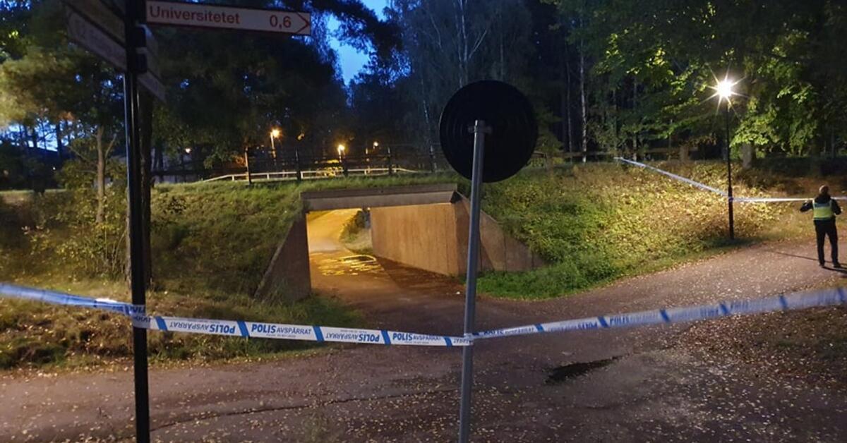 Polisen undersöker smällar på Kronoparken