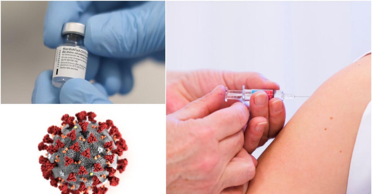Vaccinrekord denna vecka – så många doser får vårt område