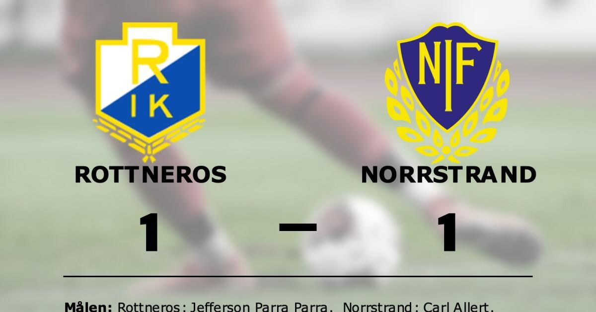 Jefferson Parra Parra räddade poäng när Rottneros kryssade