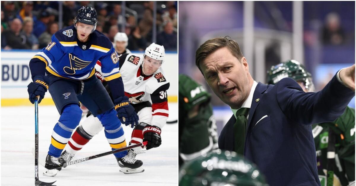 Uppgifter: Jagar NHL-svensken – erbjuder treårskontrakt