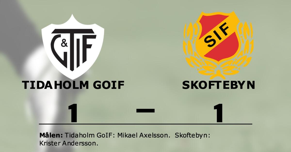 Halvtidsledning blev bara en poäng för Tidaholm GoIF