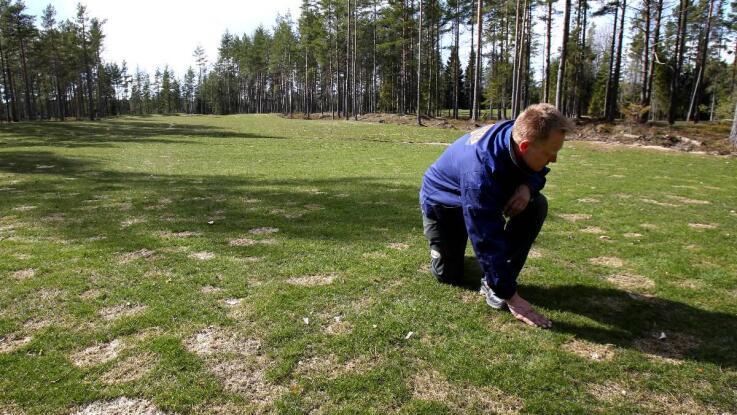 Karlstad Gk Oppnar Ny Korthalsbana I Sommar Nwt